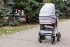 Взгляд сверху на розовой детской дорожной коляске в парке Стоковое Изображение