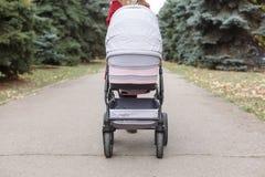 Взгляд сверху на розовой детской дорожной коляске в парке Стоковая Фотография RF