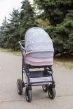 Взгляд сверху на розовой детской дорожной коляске в парке Стоковое Фото