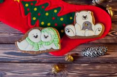 Взгляд сверху на славных домодельных печеньях пряника в формах белого медведя, морских котиках кладя на красный носок рождества о Стоковые Фотографии RF