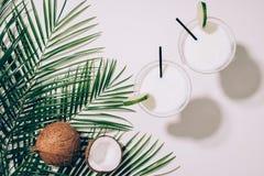 взгляд сверху органических кокосов, зеленых листьев ладони и коктеилей кокоса в стеклах с выпивая соломами стоковая фотография rf