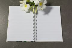 Взгляд сверху открытой книги Книга открытая, с ручкой и цветком на таблице Стоковые Изображения