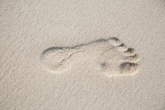 Взгляд сверху от левого следа ноги в земле песка стоковое фото rf