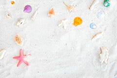 Взгляд сверху песка пляжа с раковинами и морскими звёздами Стоковое фото RF
