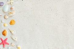 Взгляд сверху песка пляжа с раковинами, морскими звёздами и кораллом Стоковые Изображения RF