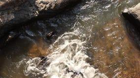 Взгляд сверху потока воды пропуская через утесы сток-видео
