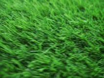 Взгляд сверху предпосылки текстуры зеленой травы видеоматериал