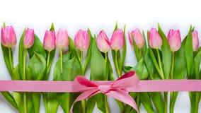 Взгляд сверху розовых тюльпанов аранжировало в линии, обернутой с розовой лентой над белой предпосылкой стоковые фотографии rf