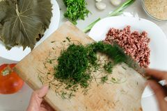 Взгляд сверху рук женщины варя традиционную еду с виноградиной выходит Стоковые Фото