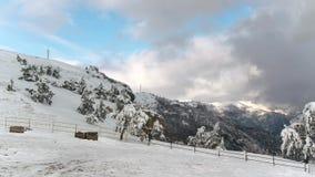 Взгляд сверху снежного ландшафта горы в съемке леса Красивый ландшафт зимы с лесом покрытым со снегом сток-видео