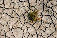 Взгляд сверху треснутой засухой текстуры почвы Сухая текстура предпосылки грязи глобальное потепление Стоковое Изображение RF