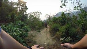 взгляд сверху 4K азиатского слона пока езда группы туристов через лес сток-видео