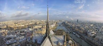 взгляд сверху paris панорамы notre dame Стоковое Фото