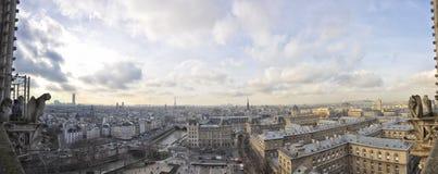 взгляд сверху paris панорамы notre dame Стоковое Изображение RF