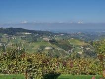 Взгляд сельской местности Langhe в Пьемонте стоковая фотография