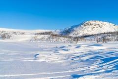 Взгляд снежного ландшафта в Beitostolen Стоковые Фотографии RF