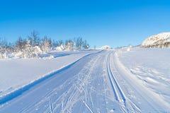 Взгляд снежного ландшафта в Beitostolen Стоковые Изображения