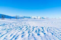 Взгляд снежного ландшафта в Beitostolen Стоковые Изображения RF