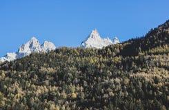 Взгляд снежных гор Альп и зеленого холма деревьев стоковая фотография