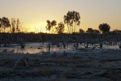 Взгляд солнца устанавливая над озером соли стоковое изображение rf