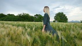Взгляд со стороны низкого угла Молодая белокурая девушка в свободном зеленом платье неторопливом идет вдоль зеленого поля пшеницы видеоматериал