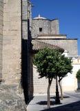 взгляд со стороны церков готский Стоковые Изображения
