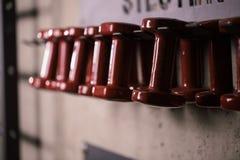 Взгляд со стороны черных гантелей в ряд в спортзале Стоковые Фото
