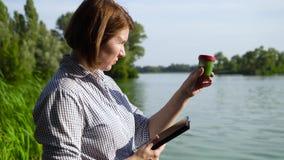Взгляд со стороны эколога рассматривая образец зеленых водорослей и входя в данные на планшете сток-видео