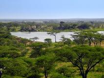 взгляд Танзании serengeti озера стоковая фотография rf