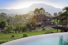 Взгляд террас риса и гор и малого бассейна на переднем плане bali Индонесия стоковое фото rf