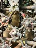 Взгляд украдкой статуя шиканья Стоковая Фотография