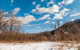 взгляд Украины прикарпатской зоны горы ландшафта intermountain скрещивания закарпатский Горы стоковые изображения
