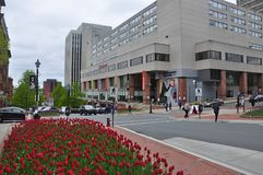 Взгляд улицы в StJohn, Ньюе-Брансуик, Канаде Стоковые Изображения RF