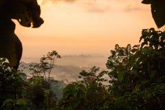 Взгляд утра Foggie долины tample Borobudur стоковые изображения