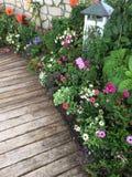 Взгляд цветков в цветени Стоковые Фотографии RF