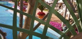 Взгляд через зеленую решетку моста на большом голубом открытом бассейне стоковое изображение