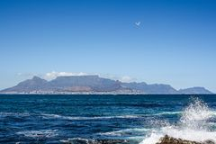 Взгляд Cape Town от острова Robben Стоковые Фотографии RF
