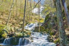 Взгляд Crabtree понижается в горы голубого Риджа Вирджинии, США Стоковая Фотография