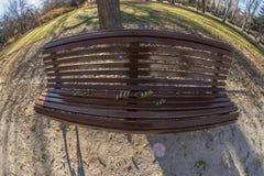 Взгляд Fisheye 180 деревянной скамьи в парке Retiro в Мадриде Стоковая Фотография RF