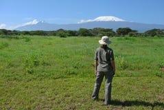 взгляд kilimanjaro стоковое фото rf