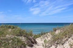 Взгляд Lake Michigan над малыми дюнами в лете Стоковые Фотографии RF