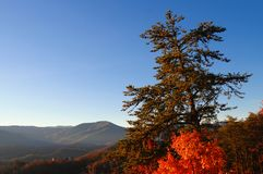 взгляд lanscape осени Стоковое Изображение