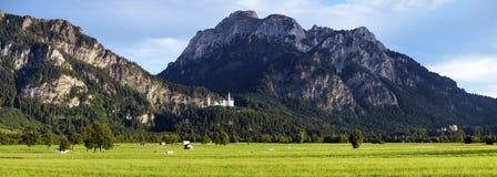 взгляд neuschwanstein замока alps баварский Стоковое Изображение