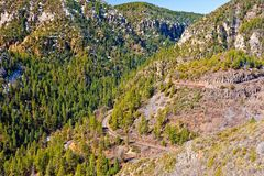 взгляд sedona дуба заводи каньона северный Стоковые Фото