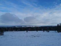 Взгляд Spokane Стоковое Фото