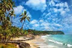 взгляд varkala океана Индии Кералы Стоковое фото RF
