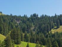 взгляд zealand tongariro парка ngauruhoe mt национальный новый Rigi в Швейцарии в лете Стоковые Фотографии RF
