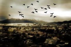 взгляд городка Стоковые Фото