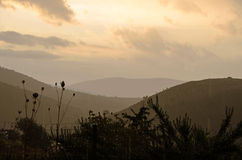 Взгляд к красивейшему ненастному утру на восходе солнца Стоковое Фото