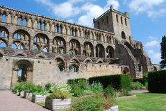 Взгляд аббатства Jedburgh Стоковая Фотография